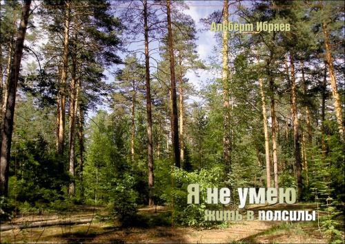 Альберт Ибряев. Я не умею жить в полсилы